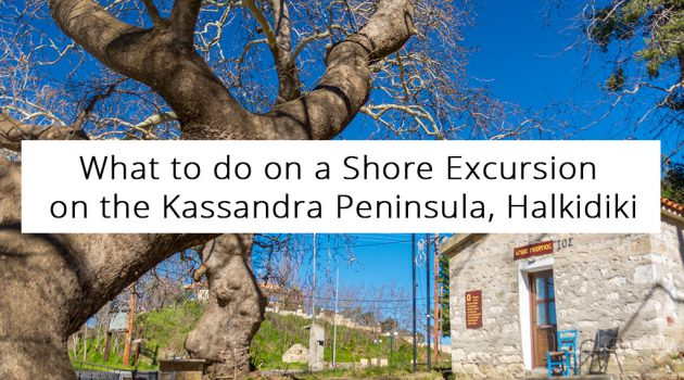 What to do on a Shore Excursion